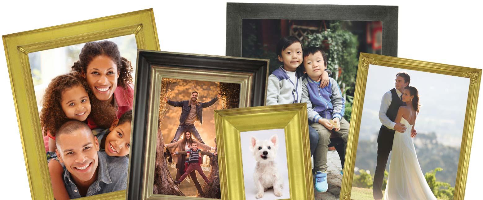 AMCI-Regence: Portrait Curated Sets