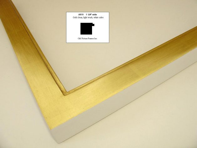 AMCI Regence - C & J Frames: a919