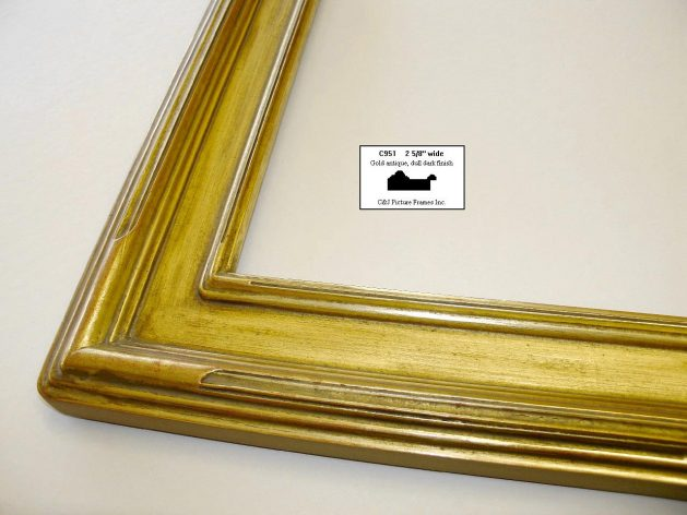 AMCI Regence - C & J Frames: c951