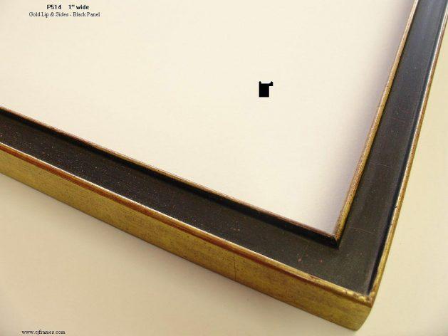 AMCI-Regence: CJFrames - Contemporary Frames - Gold Leaf - Black over Metal - Antique White - Ebony: P514